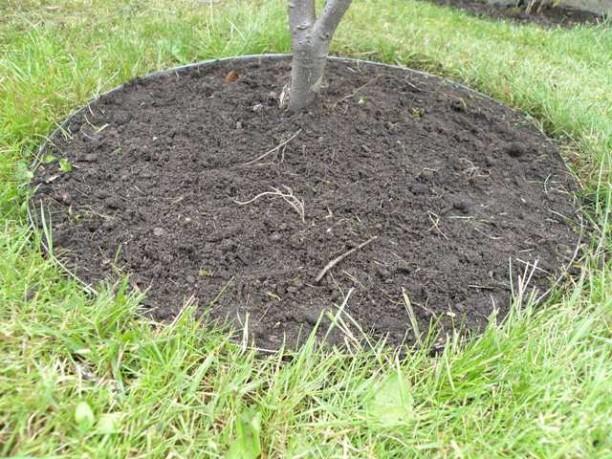 Få en flot have med bedkanter